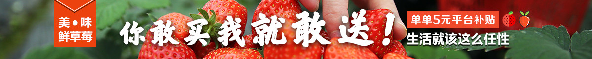 12月草莓